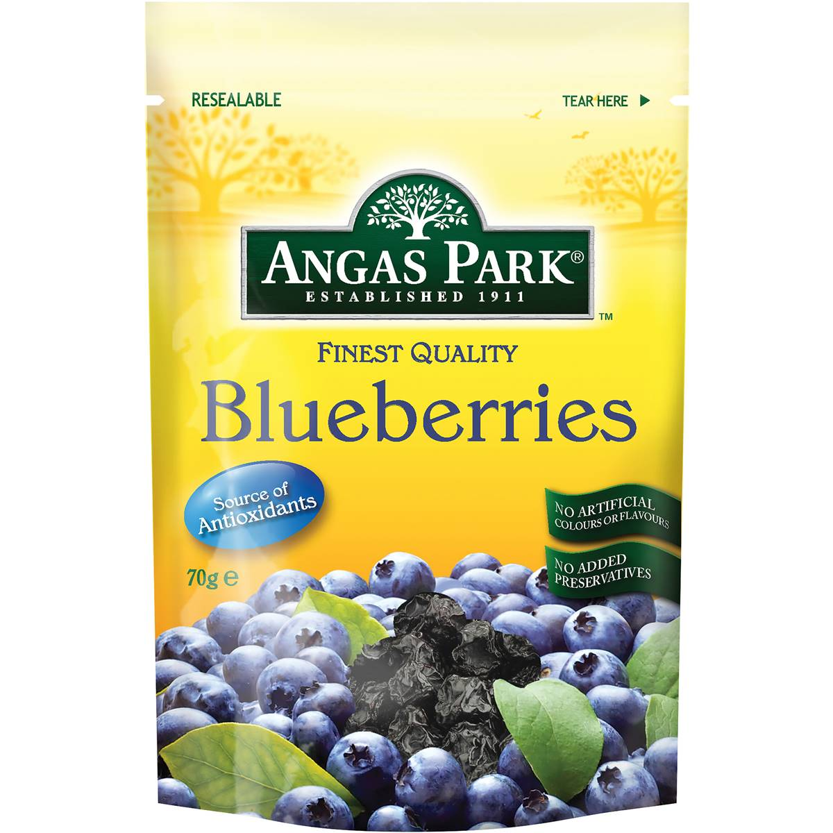 Angas Park Blueberries